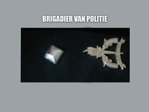 BRIGADIER VAN POLITIE new